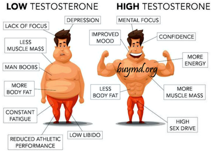 Buy Testosterone Enanthate Injections 250mg/ml Prices US UK AU